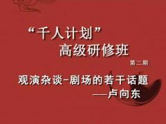 卢向东:观演杂谈——剧场的若干话题