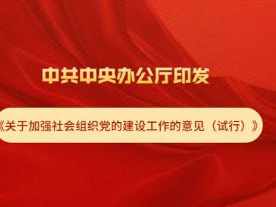 中共中央办公厅印发《关于加强社会组织党的建设工作的意见(试行)》